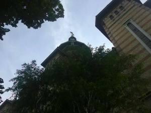 catedrala timisoara 08 aug 14