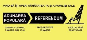 referendum cover