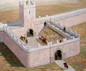 zid roman